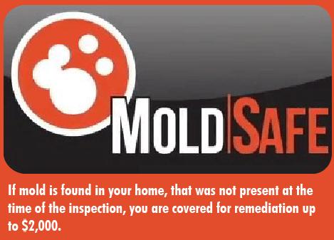 MoldSafe.Blurp